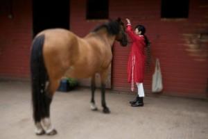 ロンドンで馬にメディカルヒーリングを施している浩子さん