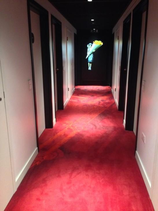 廊下のカーペットはGoogle  Earth