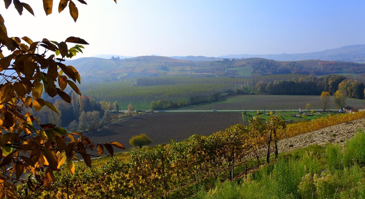 th_Piemonte_banner