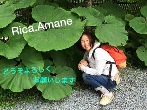 RicaAmane