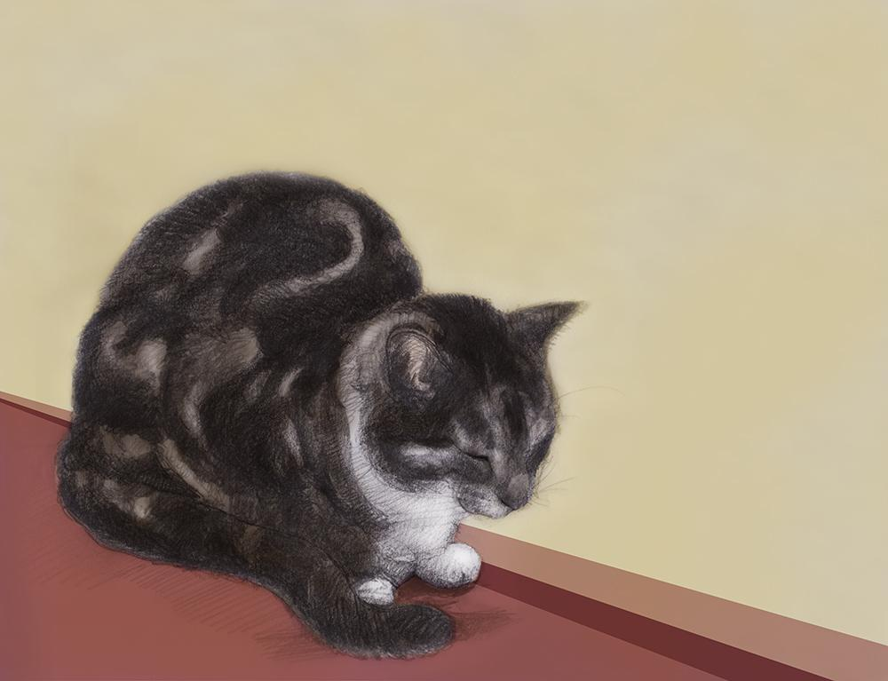 th_cat