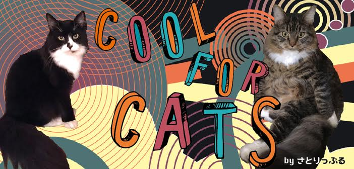 coolcats