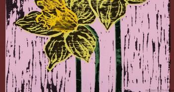 Daffodil._banner