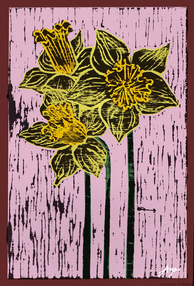 th_Daffodil