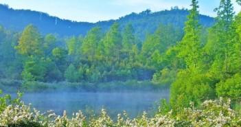lake_green
