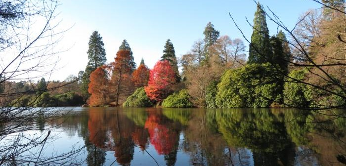 Sheffield Park and Gardenで楽しむ冬の散策