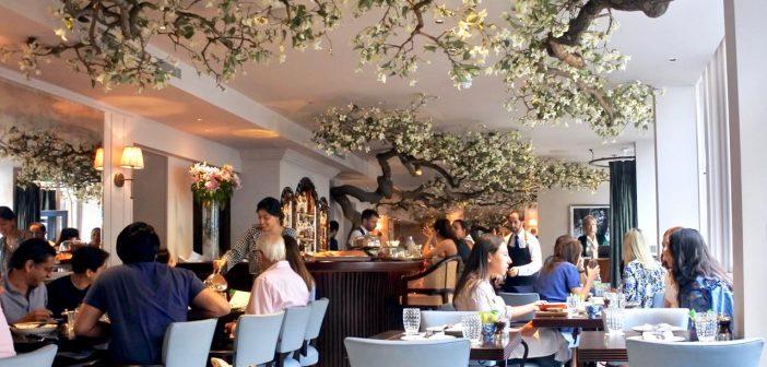 ラブリーな地中海キッチンは、年中お花見気分で♪