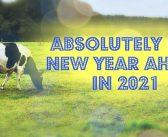 2021年は牛のごとく優雅に
